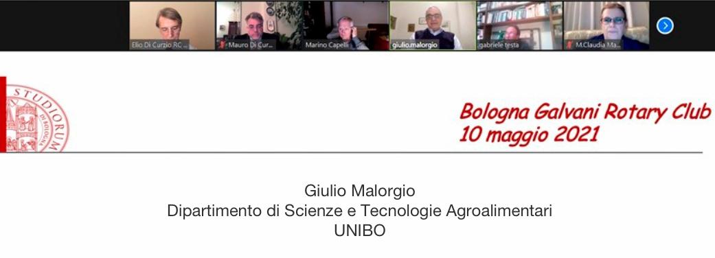Giorgio Malorgio